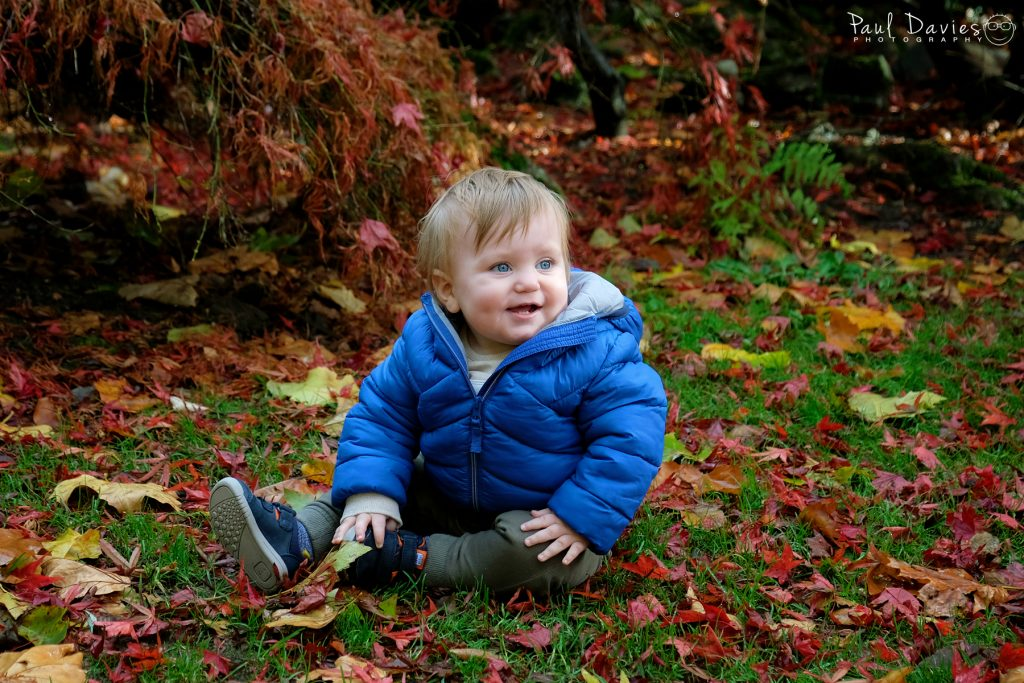 little boy in blue coat sitting in the park in autumn leaves