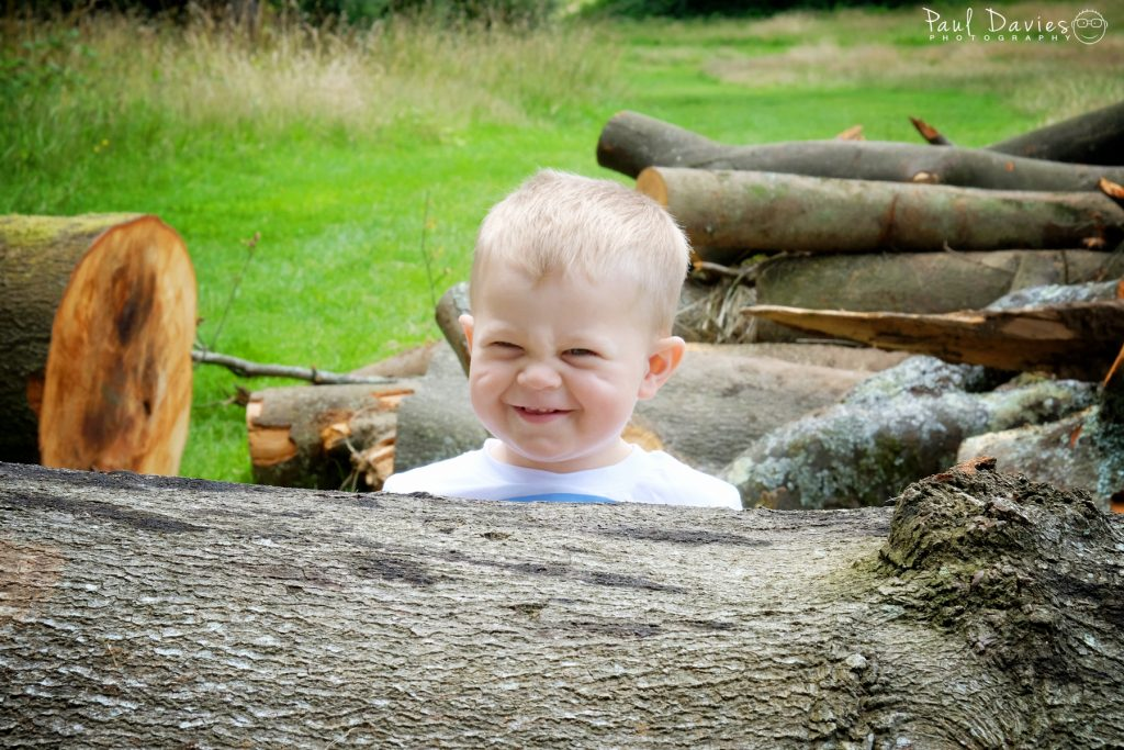 Little boy in logs in the park laughing